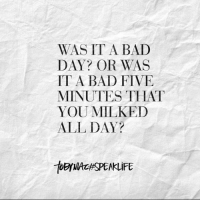 Oh @officialtobymac you just get me!!! #speaklife #fitfluential #bridgepointfl: WAS IT A BAD  DAY OR WAS  IT A BAD FIVE  MINUTES THAT  YOU MILKED  ALL DAY? Oh @officialtobymac you just get me!!! #speaklife #fitfluential #bridgepointfl