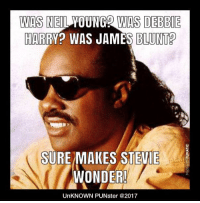 Martin, Memes, and Stevie Wonder: WAS NEIL YOUNG2 WAS DEBBIE  HARRY? WAS JAMES BLUNT?  SURE MAKES STEVIE  WONDER!  UnKNOWN PUNster @2017 Was Barry White? Was Marvin Gay? Was George Strait? Was Christopher Walken? Was Martin Short?  #UnKNOWN_PUNster