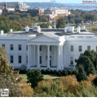 "Life, Memes, and Respect: Washington, D.C  FOX The flag at the White House flies at half-staff in ""solemn respect"" for the victims killed at the Tree of Life synagogue in Pittsburgh over the weekend."