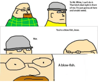 this is relevant to my life at the moment: Wat.  Yo Mr. White, Ican't do it.  That bitch died right in front  L of me.  m just gonna sit here  and smoke weed.  You're a blowfish, Jesse.  A blow-fish. this is relevant to my life at the moment