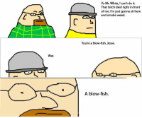 BLOWFISH.: Wat.  Yo Mr. White, l can't do it.  That bitch died right in front  L of me.  m just gonna sit here  and smoke weed.  You're a blow-fish, Jesse.  A blow-fish. BLOWFISH.