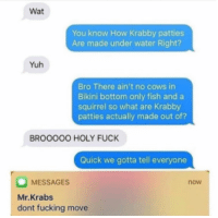 Fucking, Mr. Krabs, and Wat: Wat  You know How Krabby patties  Are made under water Right?  Yuh  Bro There ain't no cows in  Bikini bottom only fish and a  squirrel so what are Krabby  patties actually made out of?  BROOOOO HOLY FUCK  Quick we gotta tell everyone  MESSAGES  Mr.Krabs  dont fucking move  now <p>Krabby Pattys</p>