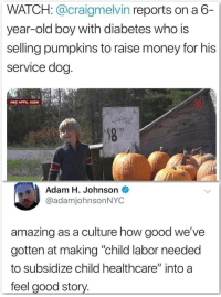 "Money, Diabetes, and Good: WATCH: @craigmelvin reports on a 6-  year-old boy with diabetes who is  selling pumpkins to raise money for his  service dog  NBC AFFIL.KSDK  LARGE  Adam H. Johnson  @adamjohnsonNYC  amazing as a culture how good we've  gotten at making ""child labor needed  to subsidize child healthcare"" into a  feel good story. Heart warming."