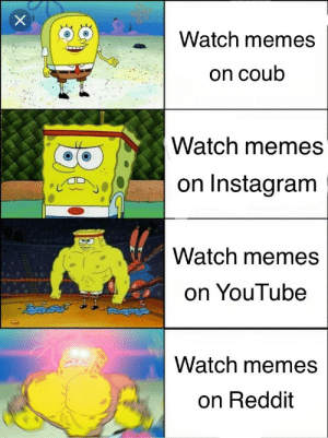 """Did anyone do this before?: Watch memes  on coub  Watch memes  on Instagram  Watch memes  on YouTube  """"ఔెదపతో  Watch memes  on Reddit Did anyone do this before?"""