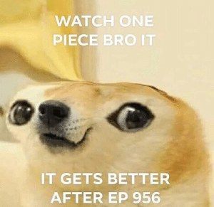 One Piece, Watch, and One: WATCH ONE  PIECE BRO IT  IT GETS BETTER  AFTER EP 956 meßirl