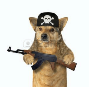 Watch out, after child soldiers, they now hire pet soldiers.: Watch out, after child soldiers, they now hire pet soldiers.