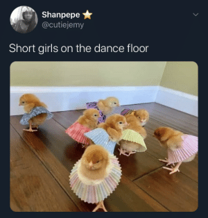 Watch out for the big girls by Zhay99 MORE MEMES: Watch out for the big girls by Zhay99 MORE MEMES