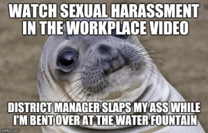 she did it immediatly following the video. I was speechless.: WATCH SEXUAL HARASSMENT  IN THE WORKPLACE VIDEO  DISTRICT MANAGER SLAPS MYASS WHILE  IM BENTOVERIAT THE WATERIFOUNTAIN  imgflip.com she did it immediatly following the video. I was speechless.