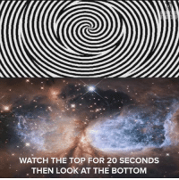 Memes, Blow My Mind, and 🤖: WATCH THE TOP FOR 20 SECONDS  THEN LOOK AT THE BOTTOM THIS IS BLOWING MY MIND :O