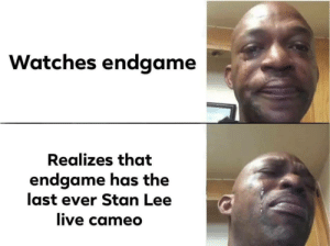 Stan, Stan Lee, and Watches: Watches endgame  Realizes that  endgame has the  last ever Stan Lee  ive camed I know this format is dead but i felt i worked really well with this