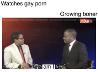 boner: Watches gay porn  Growing boner  nbs  Why  gy?