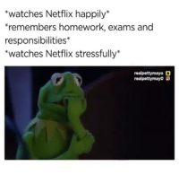 me irl: watches Netflix happily*  remembers homework, exams and  responsibilities*  *watches Netflix stressfully*  realpettymayo O  realpettymayo me irl