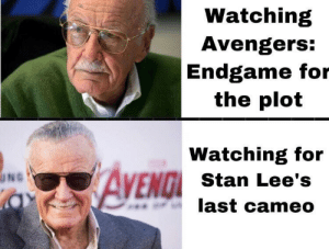 Not a spoiler: Watching  Avengers:  Endgame for  the plot  Watching for  AVEND  ENGI Stan Lee's  last cameo  UNG Not a spoiler