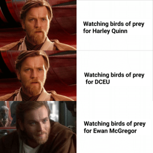Imagine Ewan saying hello there in that movie: Watching birds of prey  for Harley Quinn  Watching birds of prey  for DCEU  Watching birds of prey  for Ewan McGregor Imagine Ewan saying hello there in that movie