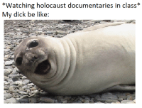 "<p>Just a meme I thought of on the spot via /r/dank_meme <a href=""http://ift.tt/2FZZfRv"">http://ift.tt/2FZZfRv</a></p>: *Watching holocaust documentaries in class*  My dick be like: <p>Just a meme I thought of on the spot via /r/dank_meme <a href=""http://ift.tt/2FZZfRv"">http://ift.tt/2FZZfRv</a></p>"