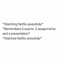 Netflix, Omg, and Watches: *Watching Netflix peacefully*  *Remembers 5 exams, 3 assignments  and a presentation*  *Watches Netflix stressfully* omg
