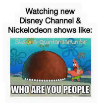 Disney, Memes, and Nickelodeon: Watching new  Disney Channel &  Nickelodeon shows like:  Susana Quintanilaltumblr  WHO ARE YOU PEOPLE