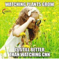 LOL! 😂😂😂: WATCHING PLANTS GROW  TURNIN  POINT USA  SSTILL BETTER  THAN WATCHING CNN LOL! 😂😂😂