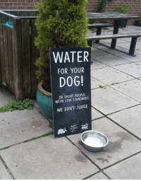 Dank, Water, and 🤖: WATER  FOR YOUR  DOG!  OR SHORT PEOPLE  WITH LOW STANDARDS  WE DON'T JUDGE  BARRY