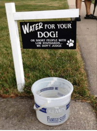 Dogs, Family, and Memes: WATER FOR YOUR  DOG!  OR SHORT PEOPLE WITH  LOW STANDARDS.  WE DON'T JUDGE  FAMILY SIuE Just try to get there before the dogs. :D