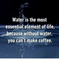 Dank, Life, and Coffee: Water is the most  essential element of life,  because without water,  you can't make coffee.