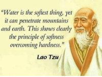 """Memes, Earth, and Water: """"Water is the softest thing, yet  it can penetrate mountains  and earth. This shows clearly  the principle of softness  overcoming hardness.""""  Lao Tzu The stronger you become, the gentler you will be. Inspired by my brother Chris @successdiaries . markiron"""