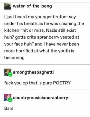 ": water-of-the-bong  Ijust heard my younger brother say  under his breath as he was cleaning the  kitchen ""hit or miss, Nazis still exist  huh? gotta crite spranberry yeeted at  your face huh"" and I have never been  more horrified at what the youth is  becoming  amongthespaghetti  fuck you op that is pure POETRY  countrymusiciancranberry  Bars"