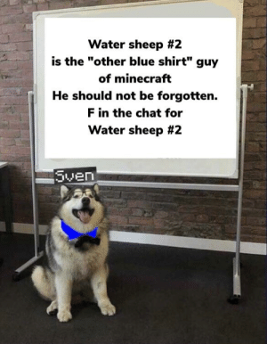 """Bad, Minecraft, and Blue: Water sheep #2  is the """"other blue shirt"""" guy  of minecraft  He should not be forgotten.  F in the chat for  Water sheep #2  Sven Water sheep bad... Water sheep #2 good!!!"""