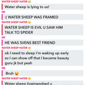 Best Friend, Bruh, and Minecraft: WATER SHEEP HATER  Water sheep is lying to us!  ME  (WATER SHEEP WAS FRAMED  WATER SHEEP HATER  WATER SHEEP IS EVIL U SAW HIM  TALK TO SPIDER  ME  HE WAS SVENS BEST FRIEND  WATER SHEEP HATER  ok I need to sleep I'm waking up early  so I can show off that I became beauty  guru jk but yeah  ME  Bruh  WATER SHEEP HATER  Water sheep brainwashed u. My online friend and I are both obsessed with Pewdiepie's Minecraft videos and I guess we represent the bittersweet feelings on this reddit for jeb_. I loved water sheep he was like a father to me smh