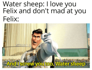Love, I Love You, and Water: Water sheep: I love you  Felix and don't mad at you  Felix:  NRROMANINU  AndI screw you too, Watersheep An interesting title