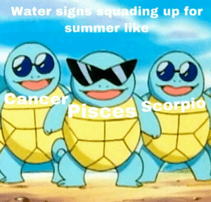 Summer, Beach, and Pisces: Water signs squ  ading up for  summer lik  CancerAC  Pisces Scorpio Water signs waiting for beach times and summer vibes!