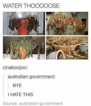 Water, Government, and Australian: WATER THOOOOOSE  cinabonjovi:  australian-government:  BYE  I HATE THIS  Source: australian-government Somebody get a can