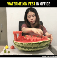 9gag, Dank, and Yeah: WATERMELON FEST IN OFFICE  SUMMER PERKS AT 9GAG APP Fruit perks to get through summer.  By Ms Yeah
