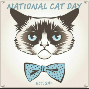 I want to see all of my feline friends!  Post a National Cat Day picture below 😻: WATIONAL CAT DAY  OCT 27  el I want to see all of my feline friends!  Post a National Cat Day picture below 😻