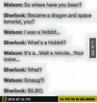 lol pics: Watson: So where have you been?  Sherlock: Became a dragon and space  terrorist, you?  Watson: I was a Hobbit.  Sherlock: What's a Hobbit?  Watson: It's a...Wait a minute...Your  voice...  Sherlock: What?  Watson: Smaug?!  Sherlock: BILBO  PCHECK OUT LOL PICS  LOL PICS FOR IOS AND ANDROID