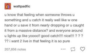 You know that feeling? via /r/wholesomememes http://bit.ly/2GhyV6u: wattpadfic  u know that feeling when someone throws u  something and u catch it really well like w one  hand or u save it from nearly dropping or u caught  it from a massive distance? and everyone around  u lights up like yoooo!! good catch!!!! nice!!!!? ? ?  ?? i want 2 live in that feeling it is so pure  207,856 notes You know that feeling? via /r/wholesomememes http://bit.ly/2GhyV6u