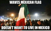 (WB): WAVES MEXICAN FLAG  DOESNT WANT TO LIVE IN MEXICO  imgfip.com (WB)