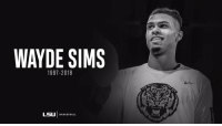 RIP Wayde Sims  The 20-year-old LSU junior was shot & killed Friday morning. https://t.co/Amr130FLur: WAYDE SIMS  1997-2018  LSU | BASKETBALL RIP Wayde Sims  The 20-year-old LSU junior was shot & killed Friday morning. https://t.co/Amr130FLur