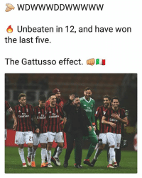 Memes, Emirates, and Ac Milan: WDWWWDDWWwww  O Unbeaten in 12, and have won  the last five.  The Gattusso effect.  mirate  Fly  Emirates  FlV  Fly  Emirae emirates  Emira  21 AC Milan's recent form 👏 AC Milan Gattuso Form Team
