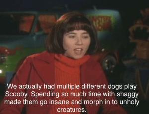 Dogs, Time, and Creatures: We actually had multiple different dogs play  Scooby. Spending so much time with shaggy  made them go insane and morph in to unholy  creatures.
