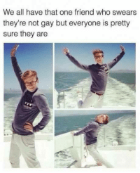 memes: We all have that one friend who swears  they're not gay but everyone is pretty  sure they are