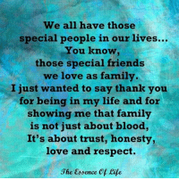 Bloods, Memes, and Essence: We all have those  special people in our lives...  You know,  those special friends  we love as family  I just wanted to say thank you  for being in my life and for  showing me that family  is not just about blood,  It's about trust, honesty,  love and respect.  Jhe Essence Of Life The essence of life  <3 www.thewellnessuniverse.com #WUVIP