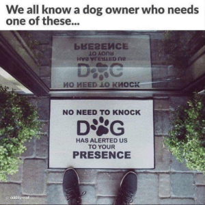 Dog Owner: We all know a dog owner who needs  one of these...  LO Aonb  NO NEED TO KNOCK  HAS ALERTED US  TO YOUR  PRESENCE  odditymall