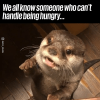 """Dank, Hungry, and 🤖: We all know someone who cant  handle being hungry. """"Excuse me, may I please have a bite?"""" 😭"""