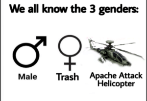 Trash, Fuck, and Good: We all know the 3 genders:  Trash Apache Attack  Helicopter  Male  Oн The helicopter doesn't look that good but fuck it