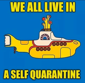 We all Live in a Yellow submarine*: We all Live in a Yellow submarine*
