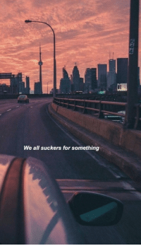 suckers: We all suckers for something