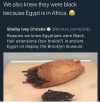 Africa, Braids, and Funny: We also knew they were black  because Egypt is in Africa.  Shelby Ivey Christie @bronze_bombSHEL  Reasons we know Egyptians were Black.  Hair extensions (box braids?) in ancient  Egypt on display the Brooklyn museum: 😂😂 - - - - funnyshit funmemes100 instadaily instaday daily posts fun nochill girl savage girls boys men women lol lolz follow followme follow for more funny content 💯 @funmemes100