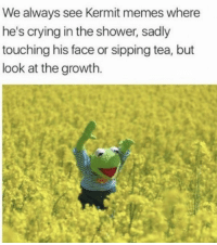 Crying, Memes, and Shower: We always see Kermit memes where  he's crying in the shower, sadly  touching his face or sipping tea, but  look at the growth. awesomacious:  Kermit the happy frog