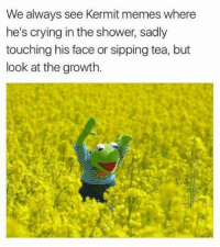 portmanteau-bot:  positive-memes:  Happy Kermit  happy + kermit = happermit.Beep-boop. Portmanteau^bot^1Your Human® Body® is mediocre | PayPal | Patreon: We always see Kermit memes where  he's crying in the shower, sadly  touching his face or sipping tea, but  look at the growth portmanteau-bot:  positive-memes:  Happy Kermit  happy + kermit = happermit.Beep-boop. Portmanteau^bot^1Your Human® Body® is mediocre | PayPal | Patreon